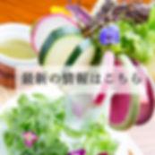 紀伊国野菜のバーニャカウダパフェ②.jpg