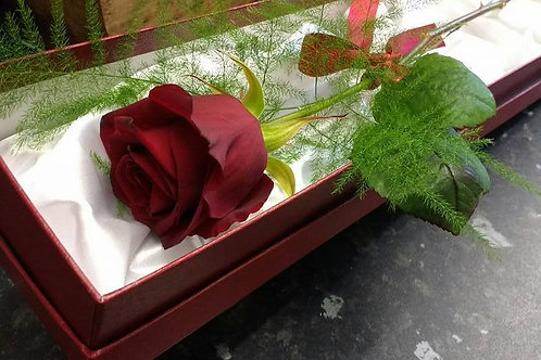 Sweetheart Rose in a Display Box