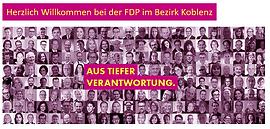 FDP Bezirksverband.PNG