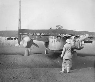 planes covered in ash.jpg