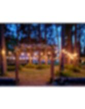 Grand-Pend-Oreille-Weddings-trees-lights-venue.jpg
