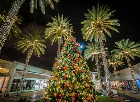 A Christmas in Miami - What to do? 🎄