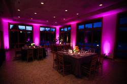 Hot Pink Lighting .jpg