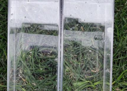 Clear Water Carton Flow