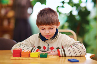Educational Options For Students With Disabilities