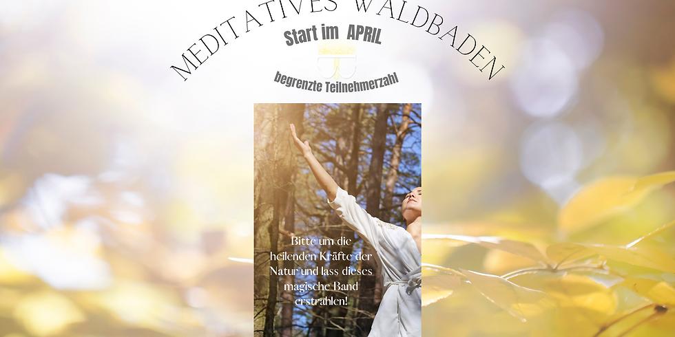 Meditatives Waldbaden