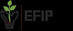 EFIP d. d.