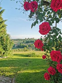 Garten-Dobida.jpg