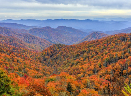 Fall into postcard views with Rainbow Getaways