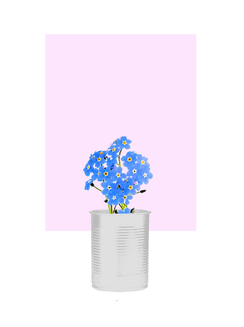 Forget Me Not (Soft Pink SQ)