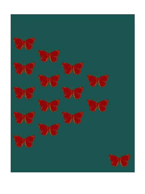 Butterfly Breaking Free