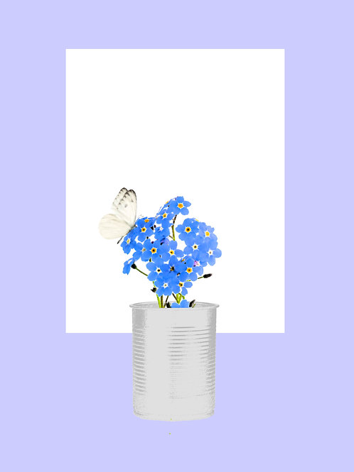 Forget-Me-Not with White Butterfly