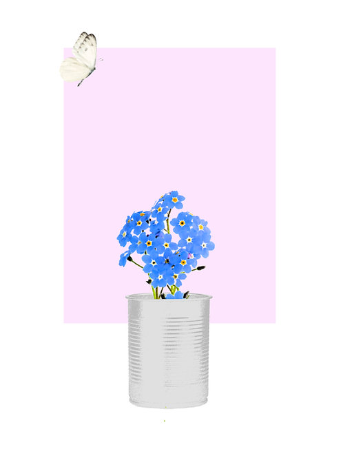 Forget Me Not with White Butterfly Flying (Soft Pink SQ)