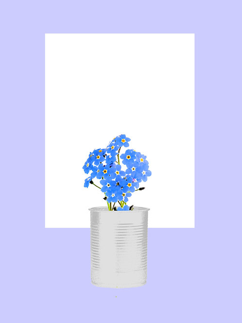 Forget-Me-Not Periwinkle
