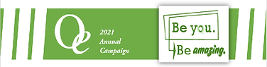 Annual Campaign header.png