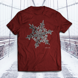 1910 Snowflake