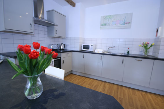 Ridgeway-kitchen-1