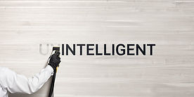 minisite-cover-intelligent.jpg