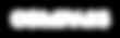 compass_logo_white_transparent (1).png