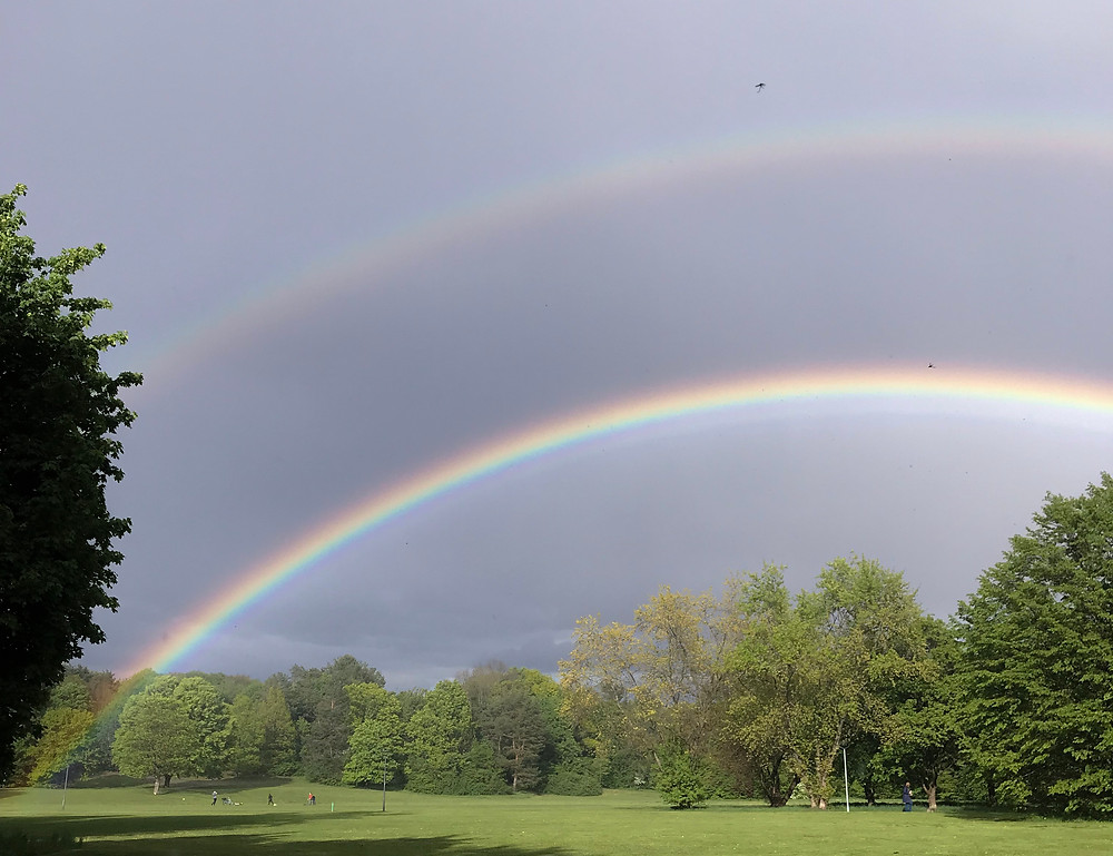 zwei Regenbögen sind über dem Park zu sehen