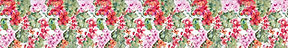FLOWER BORDER_s (2).jpg