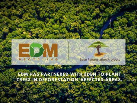 EDM's Reforestation Commitment