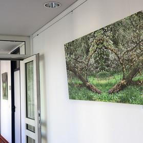 Ausstellung im Rathaus Schnaittach