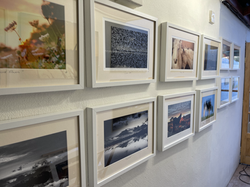 Hanging Gallery photographic art
