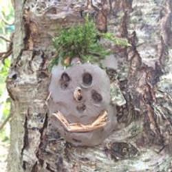 wildwoods7