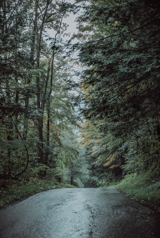 Backroad Beauty