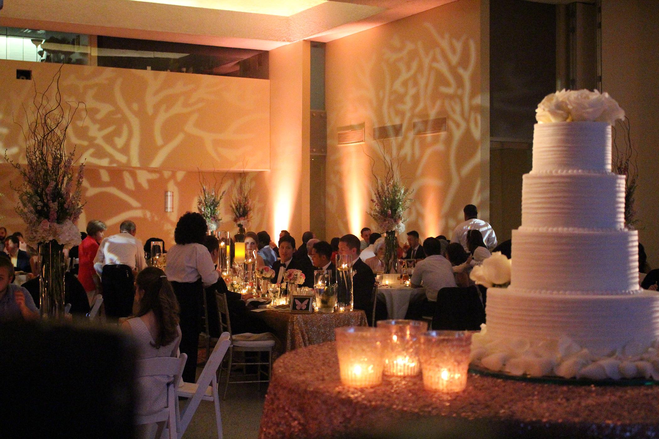 DLS Wedding Reception Lighting 101