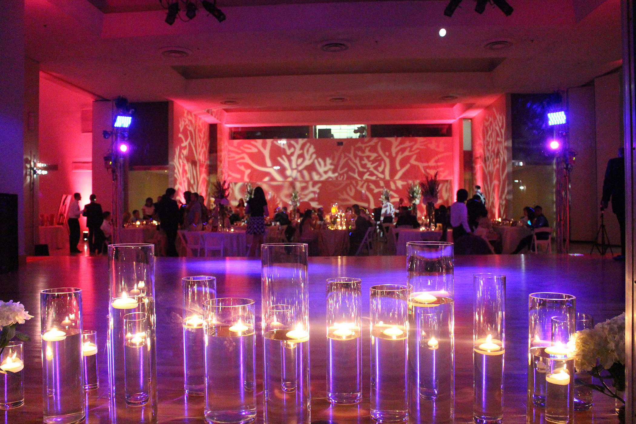 DLS Wedding Lighting 102