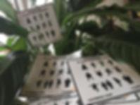 des cartes de toilettes non-genrées et une plante