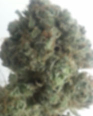 Blueberry-Sour-Diesel.jpg