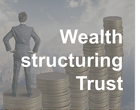 Wealth structuring Trust.png
