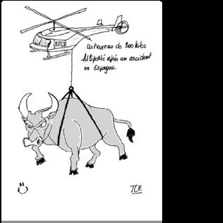 21_04_30 Taureau héliporté.png
