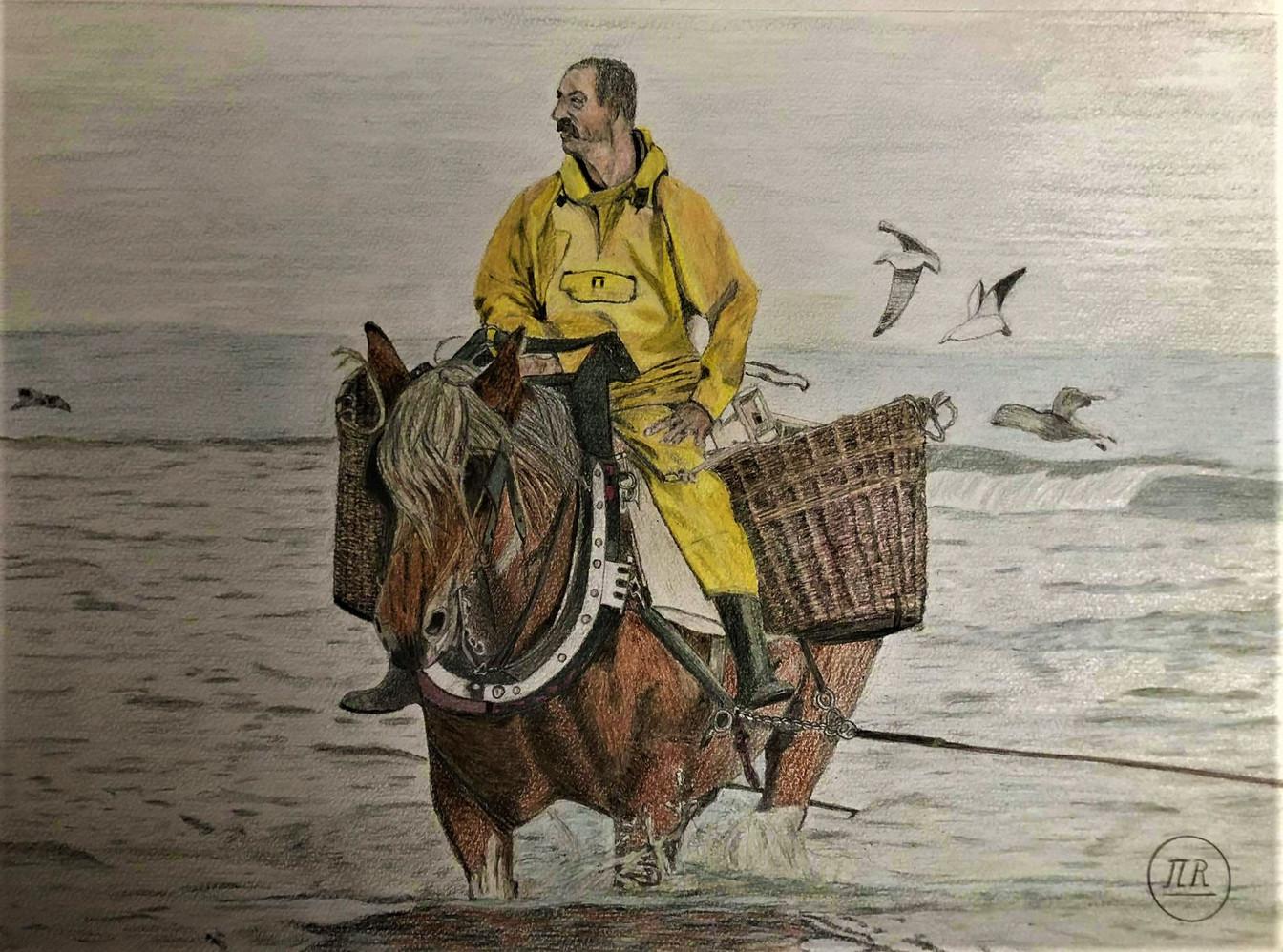 Pêche aux crevettes en mer du nord.