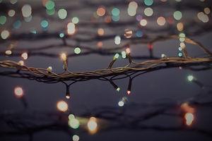 Christmas Lights on Trees_edited_edited.jpg