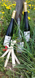 Bocking riesling pinot blanc apraragus pairing