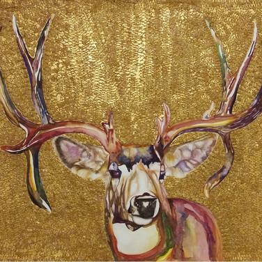 Mr Deer (鹿生), 2016