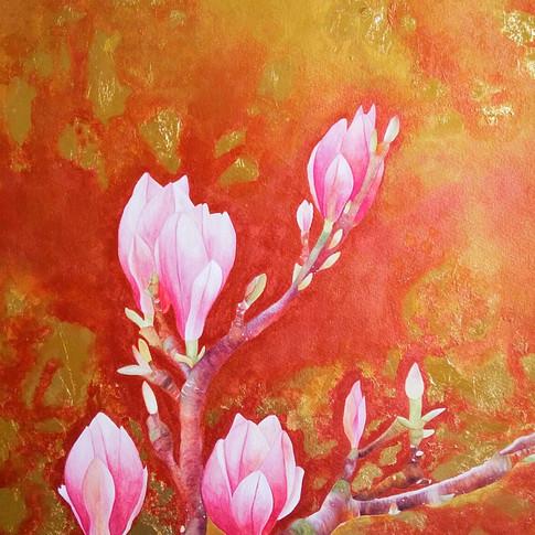 Pink magnolia (粉色玉蘭), 2017