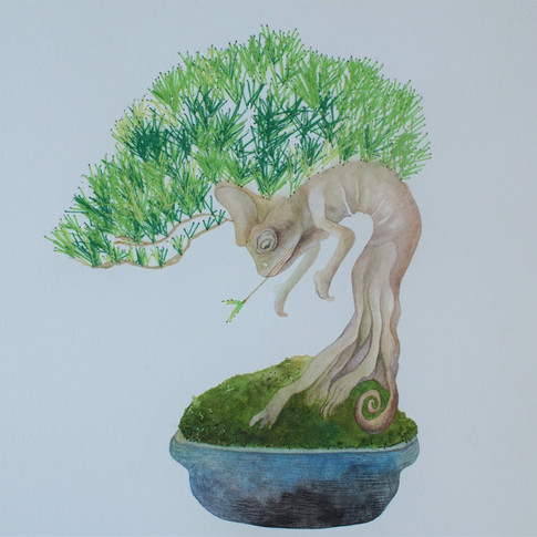 Tree Goblin (樹妖), 2019