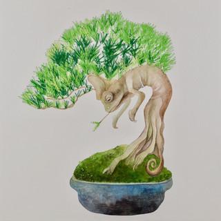 Tree goblin