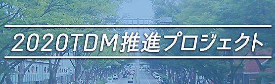 banner_2020tdm_v1.jpg