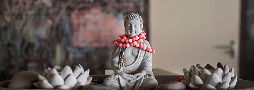 yogasite-prijzen-contact