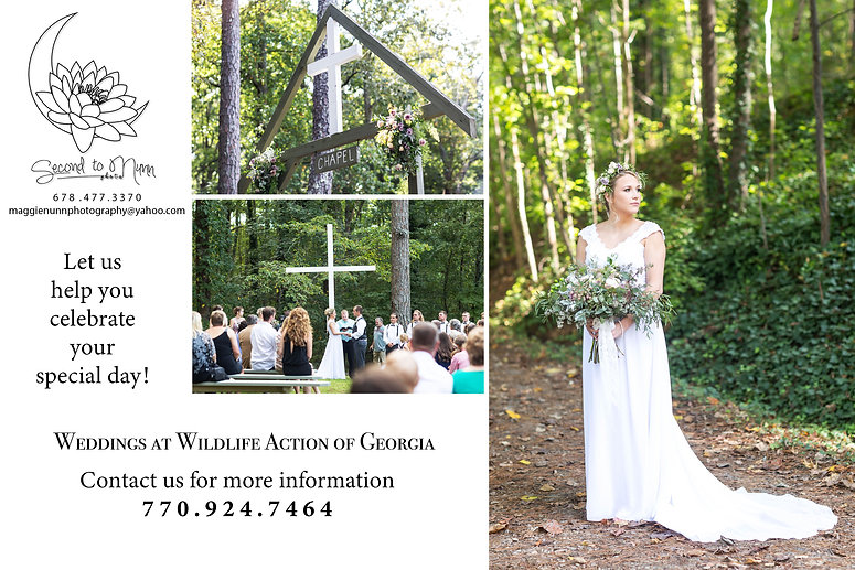 Wedding venue, outdoor wedding, lakeside weddingWildlife Action, Outdoor Education, camping, fishing, hunting, hiking