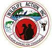 Wildlife Action Inc, Wildlife Actionof Georgia, Georgia State Chapter,WILDLIFE ACTION OF GEORGIA BOAT DOCK, WILDLIFE, ACTION, LAKE, ALLATOONA, KELLOGG CREEK, OUTREACH, EDUCATION, CAMPING, FISHING, SWIMMING, SCOUTS, EVENTS, WEDDING VENUE