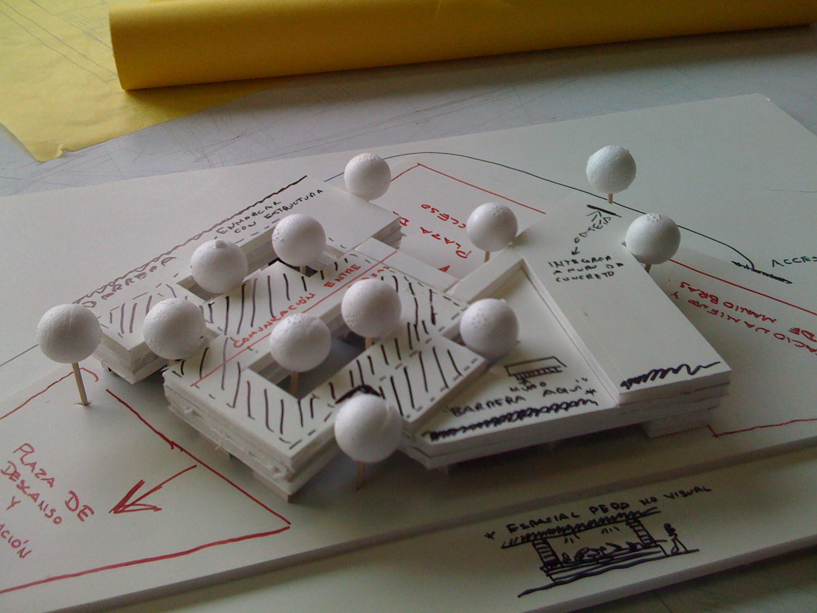Study model