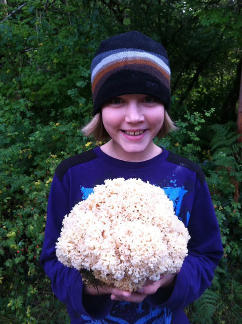 Gus with cauliflower mushroom