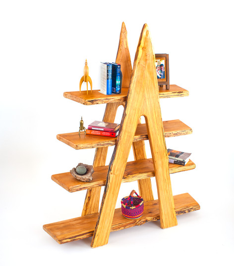 A-Frame Bookcase
